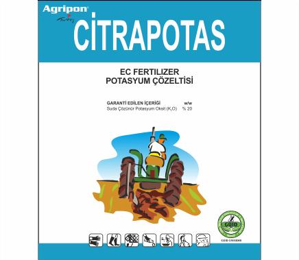 Citrapotas