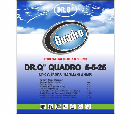 Dr.Q Quadro 5-5-25