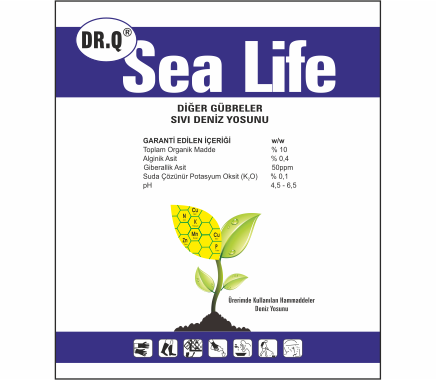 DR.Q Sea Life